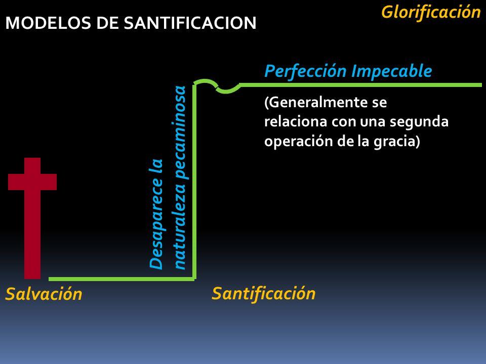 MODELOS DE SANTIFICACION Perfección Impecable Desaparece la naturaleza pecaminosa Salvación (Generalmente se relaciona con una segunda operación de la