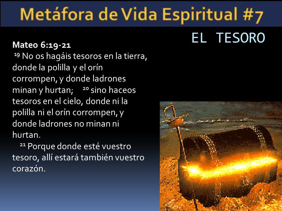Mateo 6:19-21 19 No os hagáis tesoros en la tierra, donde la polilla y el orín corrompen, y donde ladrones minan y hurtan; 20 sino haceos tesoros en e
