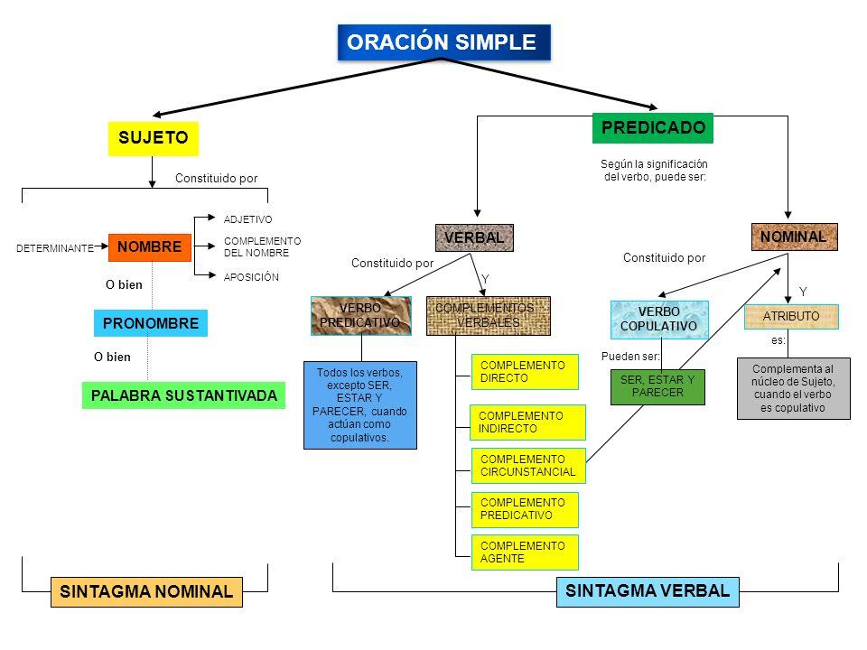 ORACIÓN SIMPLE PREDICADO Constituido por DETERMINANTE NOMBRE ADJETIVO COMPLEMENTO DEL NOMBRE Constituido por VERBO PREDICATIVO COMPLEMENTOS VERBALES COMPLEMENTO DIRECTO COMPLEMENTO INDIRECTO COMPLEMENTO CIRCUNSTANCIAL COMPLEMENTO PREDICATIVO ATRIBUTO COMPLEMENTO AGENTE APOSICIÓN Y Complementa al núcleo de Sujeto, cuando el verbo es copulativo SUJETO VERBAL NOMINAL VERBO COPULATIVO SINTAGMA NOMINAL PRONOMBRE O bien SINTAGMA VERBAL SER, ESTAR Y PARECER Todos los verbos, excepto SER, ESTAR Y PARECER, cuando actúan como copulativos.
