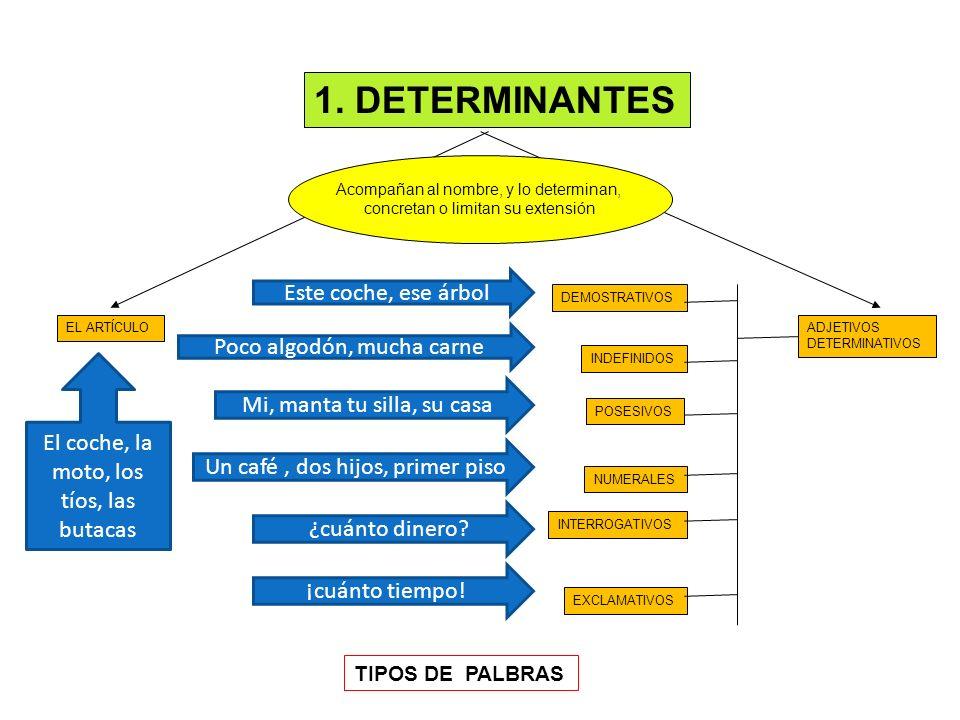 1. DETERMINANTES EL ARTÍCULO DEMOSTRATIVOS INDEFINIDOS POSESIVOS NUMERALES INTERROGATIVOS EXCLAMATIVOS Acompañan al nombre, y lo determinan, concretan