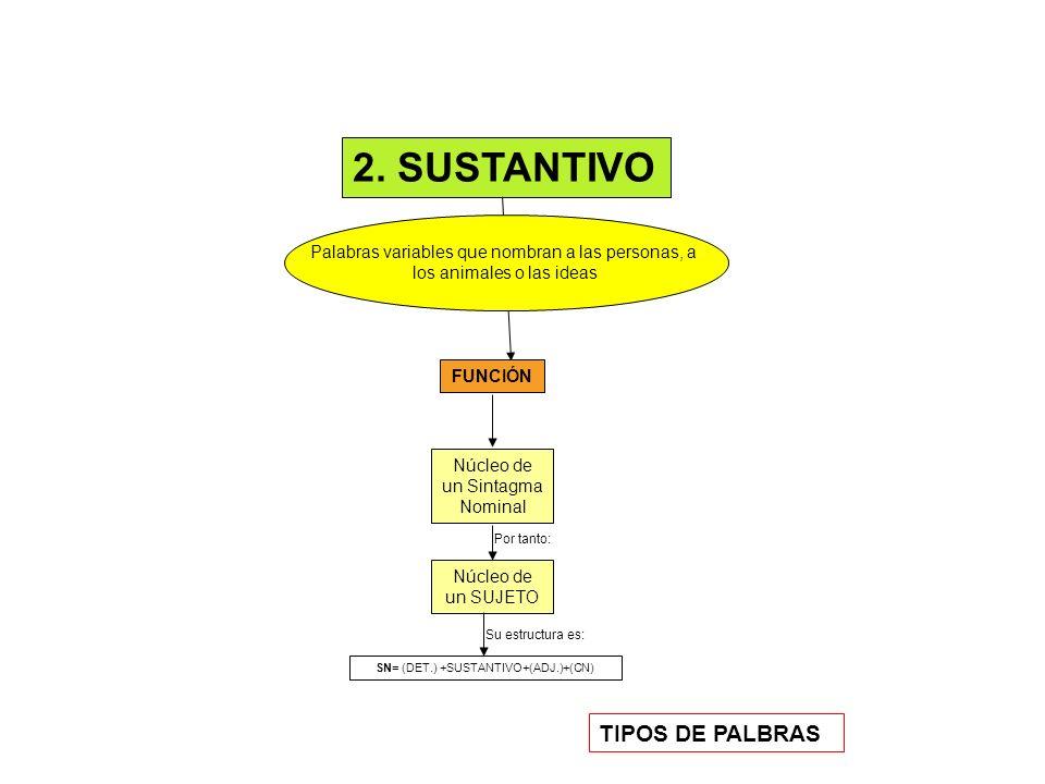 FUNCIÓN LA SUSTANTIVACIÓN Palabras variables que expresan cualidades o circunstancias de origen, procedencia o estado, que se dice del sustantivo.