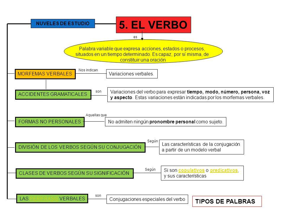5. EL VERBO ACCIDENTES GRAMATICALES Palabra variable que expresa acciones, estados o procesos, situados en un tiempo determinado. Es capaz, por sí mis