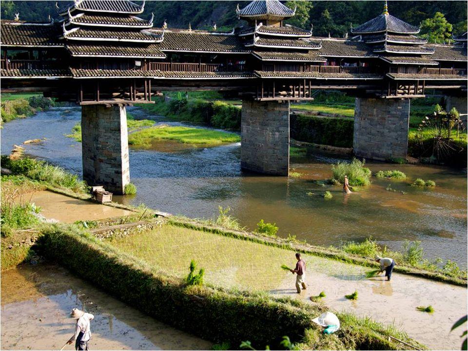 En Lucerna, hay dos puentes medievales de madera que cruzan el cauce del Reuss.