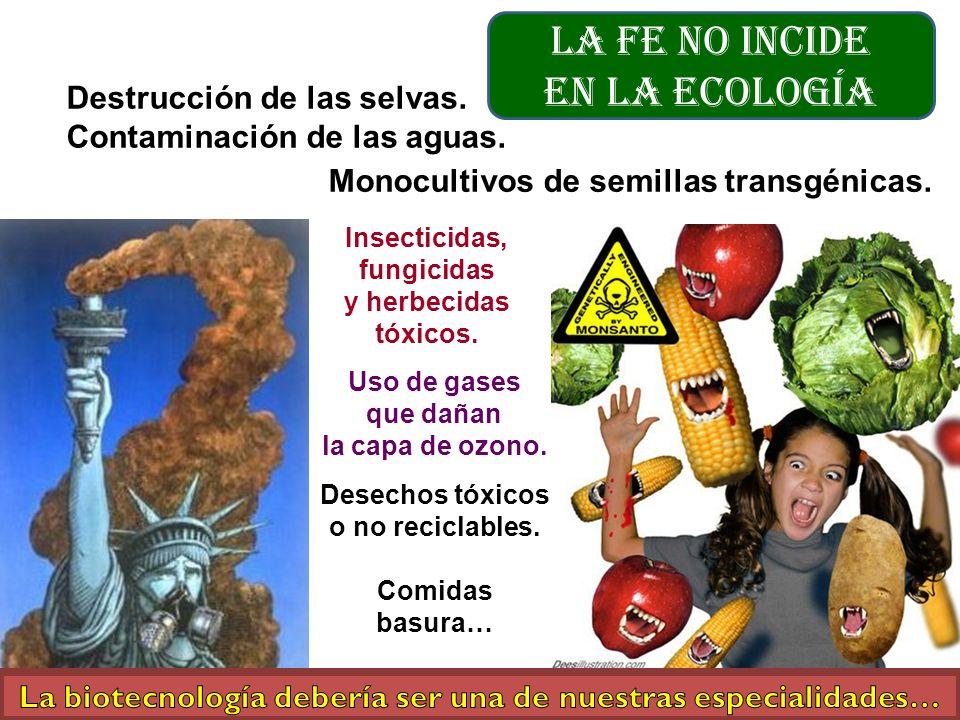 La fe no incide en la Ecología Destrucción de las selvas. Contaminación de las aguas. Desechos tóxicos o no reciclables. Comidas basura… Monocultivos