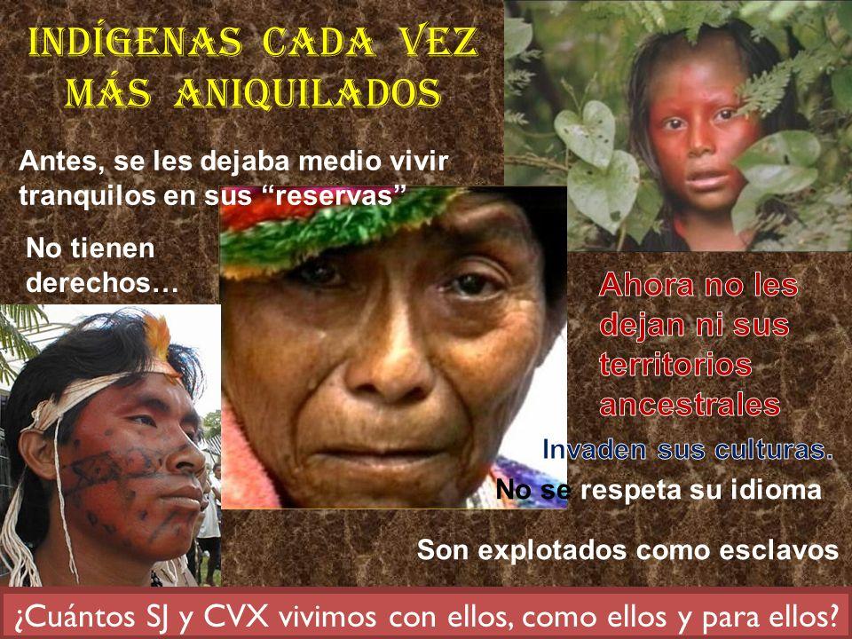 Antes, se les dejaba medio vivir tranquilos en sus reservas No se respeta su idioma No tienen derechos… Son explotados como esclavos ¿Cuántos SJ y CVX