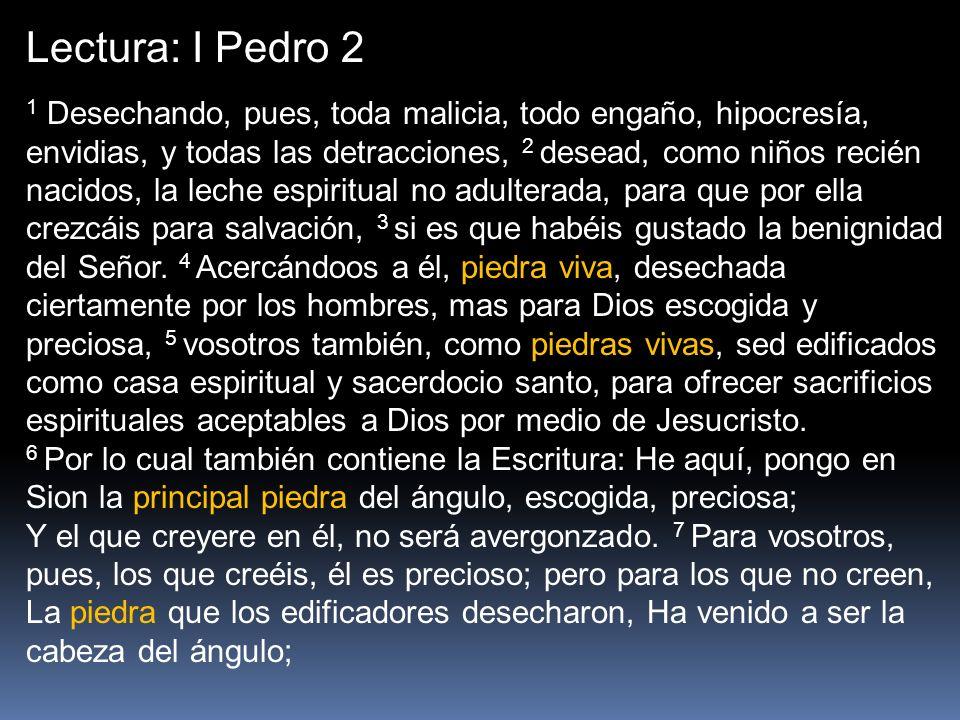 Lectura: I Pedro 2 1 Desechando, pues, toda malicia, todo engaño, hipocresía, envidias, y todas las detracciones, 2 desead, como niños recién nacidos,
