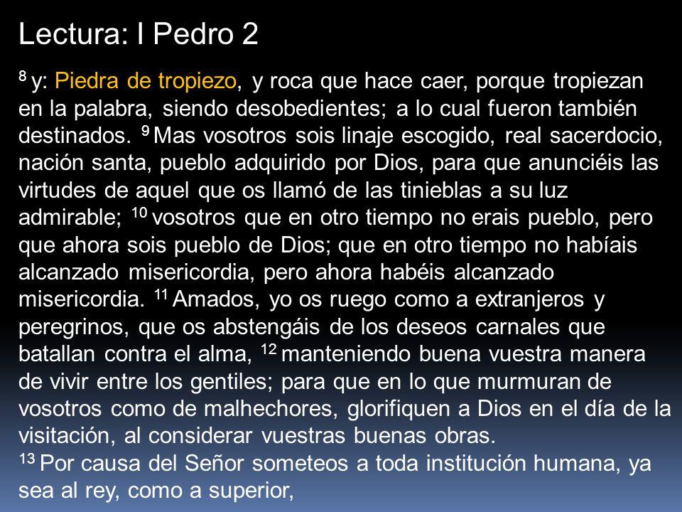 Lectura: I Pedro 2 8 y: Piedra de tropiezo, y roca que hace caer, porque tropiezan en la palabra, siendo desobedientes; a lo cual fueron también desti