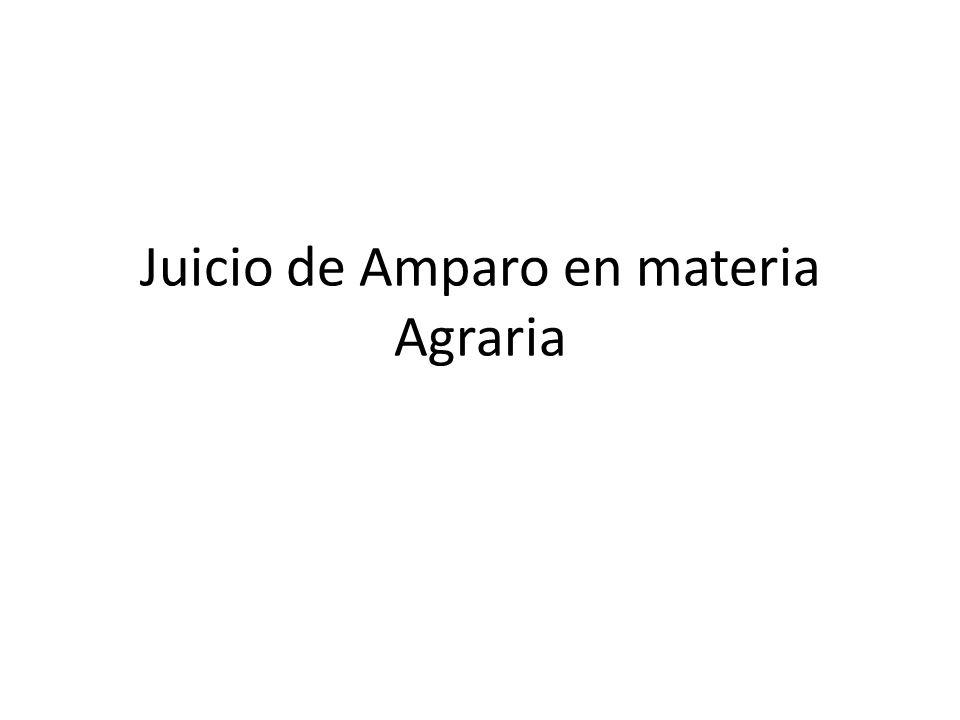 Juicio de Amparo en materia Agraria