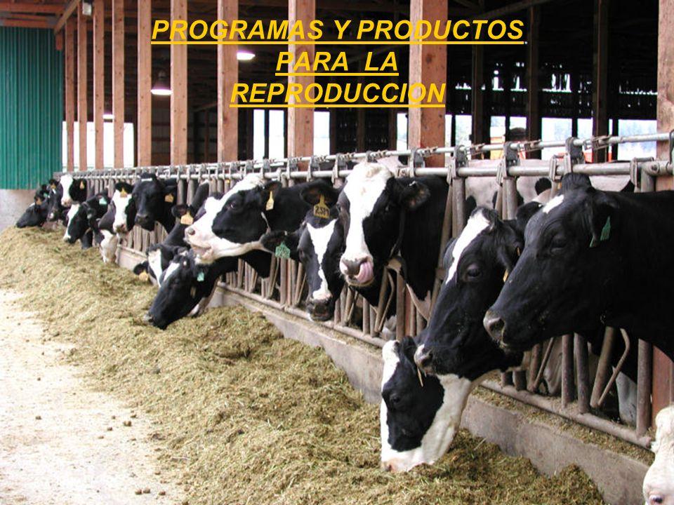 PROGRAMAS Y PRODUCTOS PARA LA REPRODUCCION