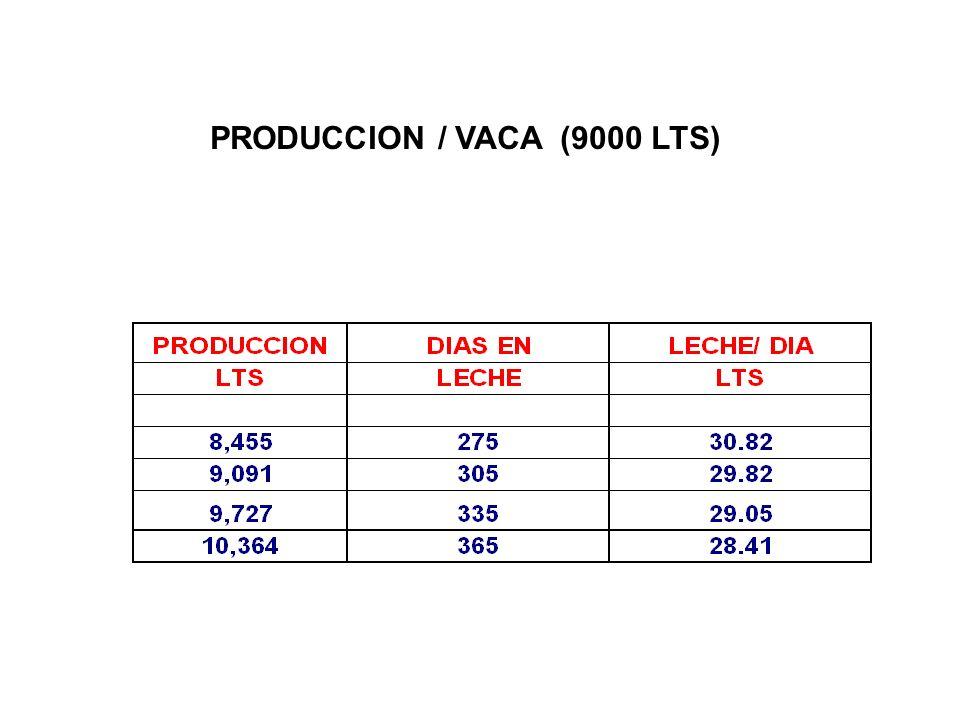 PRODUCCION / VACA (9000 LTS)