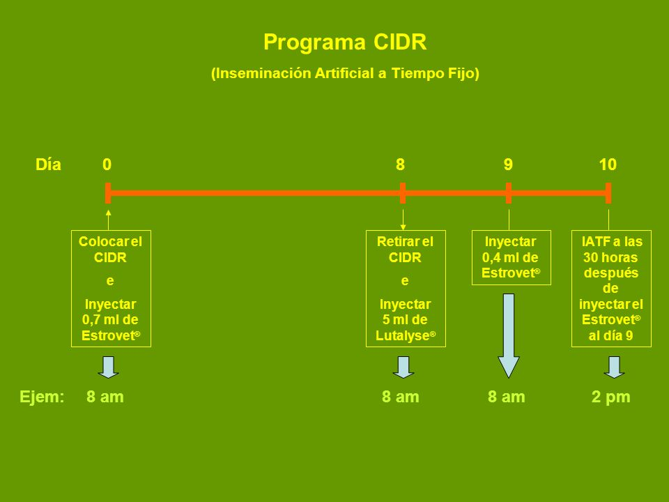 Día0 89 10 Colocar el CIDR e Inyectar 0,7 ml de Estrovet ® Retirar el CIDR e Inyectar 5 ml de Lutalyse ® Inyectar 0,4 ml de Estrovet ® IATF a las 30 h