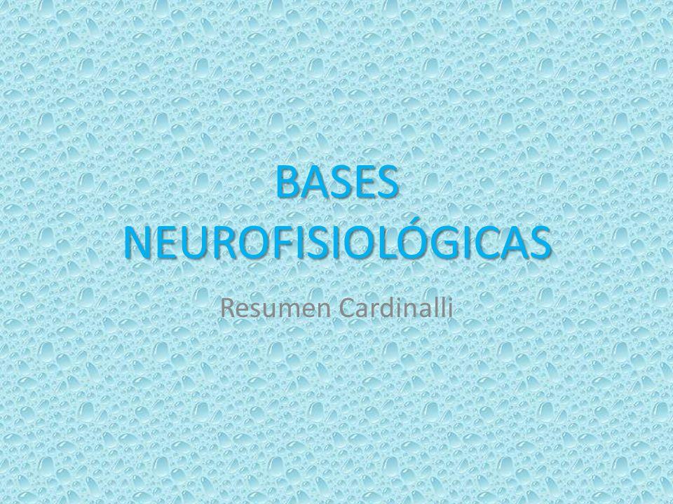 BASES NEUROFISIOLÓGICAS Resumen Cardinalli