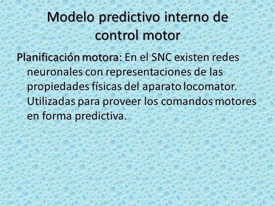 Modelo predictivo interno de control motor Planificación motora: Planificación motora: En el SNC existen redes neuronales con representaciones de las propiedades físicas del aparato locomator.