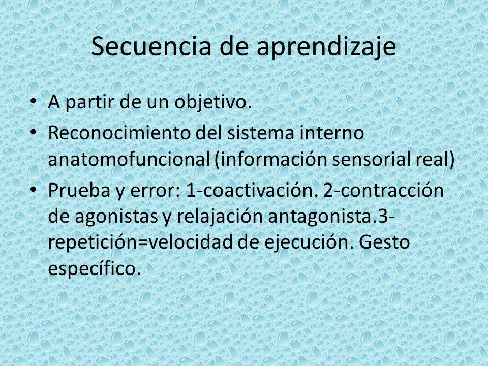 Secuencia de aprendizaje A partir de un objetivo. Reconocimiento del sistema interno anatomofuncional (información sensorial real) Prueba y error: 1-c
