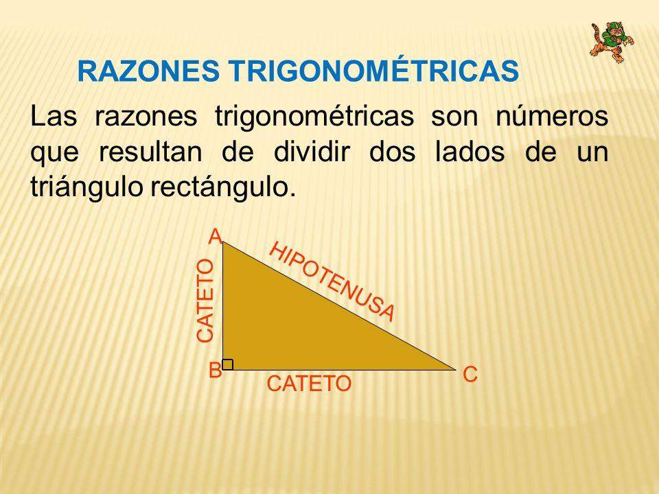 RAZONES TRIGONOMÉTRICAS Las razones trigonométricas son números que resultan de dividir dos lados de un triángulo rectángulo.