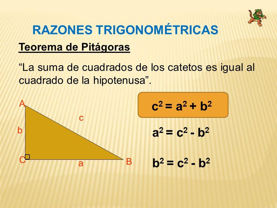 RAZONES TRIGONOMÉTRICAS A C B a b c Teorema de Pitágoras La suma de cuadrados de los catetos es igual al cuadrado de la hipotenusa.