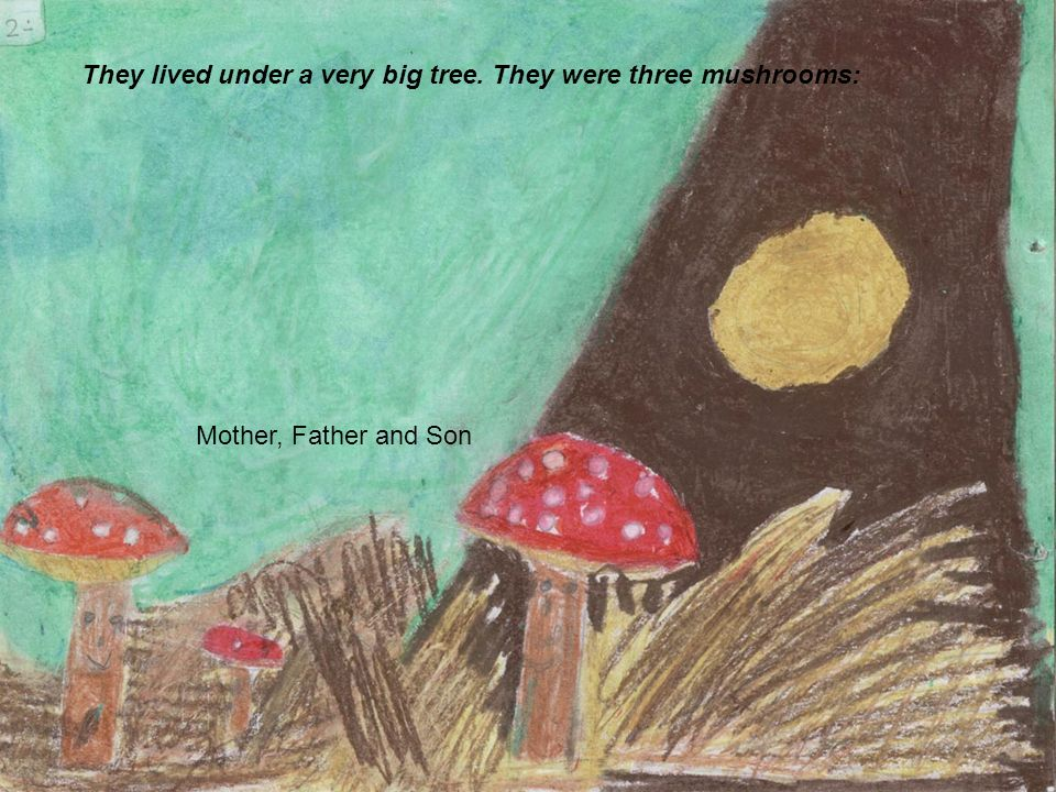 Mother, Father and Son. They lived under a very big tree. They were three mushrooms: Mother, Father and Son
