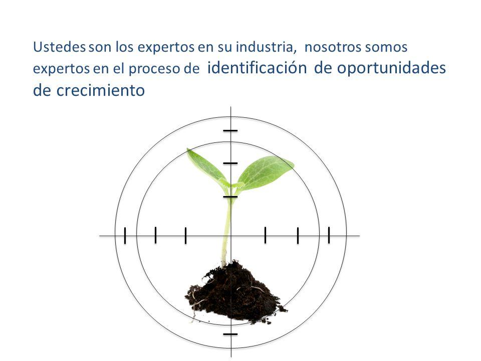 Ustedes son los expertos en su industria, nosotros somos expertos en el proceso de identificación de oportunidades de crecimiento