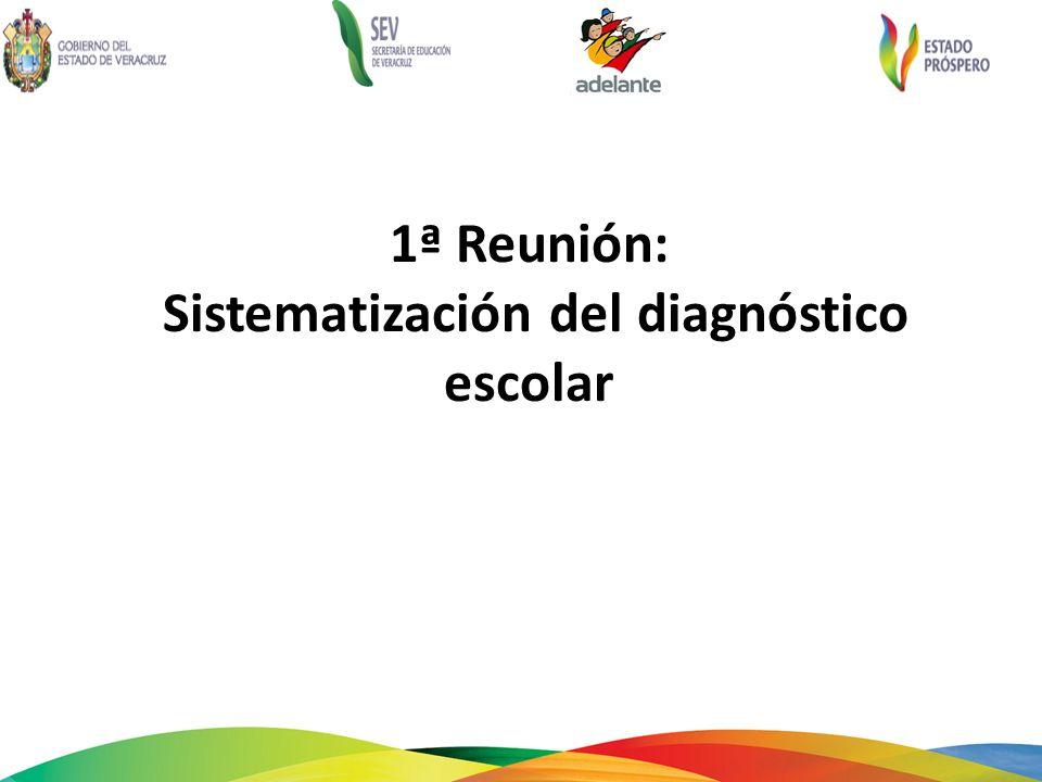 1ª Reunión: Sistematización del diagnóstico escolar