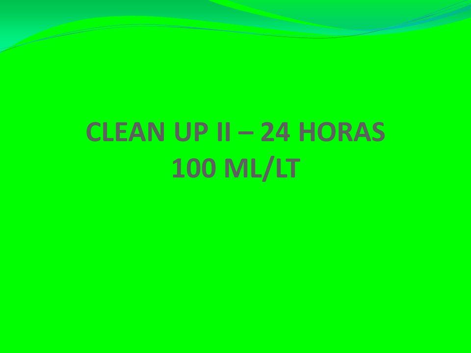 CLEAN UP II – 24 HORAS 100 ML/LT