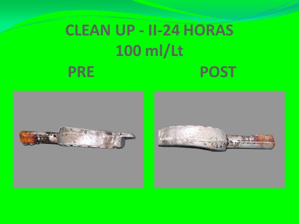 CLEAN UP - II-24 HORAS 100 ml/Lt PRE POST