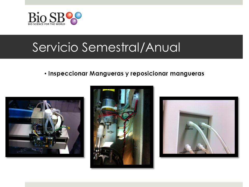 Servicio Semestral/Anual Inspeccionar Mangueras y reposicionar mangueras