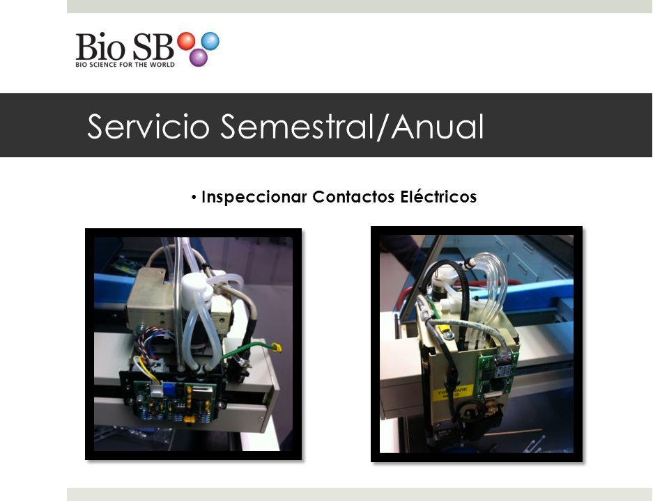 Servicio Semestral/Anual Inspeccionar limpiar Sonda