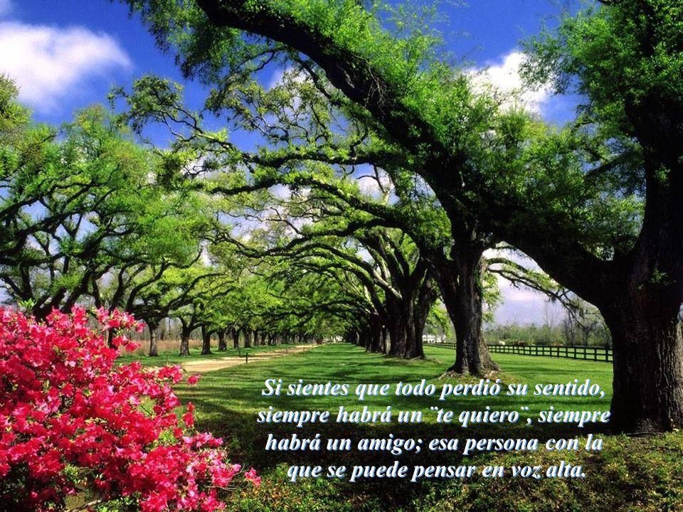 Vita Noble Powerpoints Si sientes que todo perdió su sentido, siempre habrá un ¨te quiero¨, siempre habrá un amigo; esa persona con la que se puede pensar en voz alta.