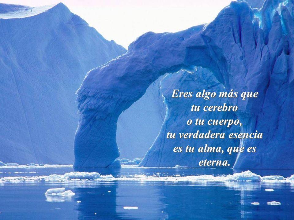Vita Noble Powerpoints Compañero: el Dios en quién yo creo, no nos manda el problema, sino la fuerza para sobrellevarlo.