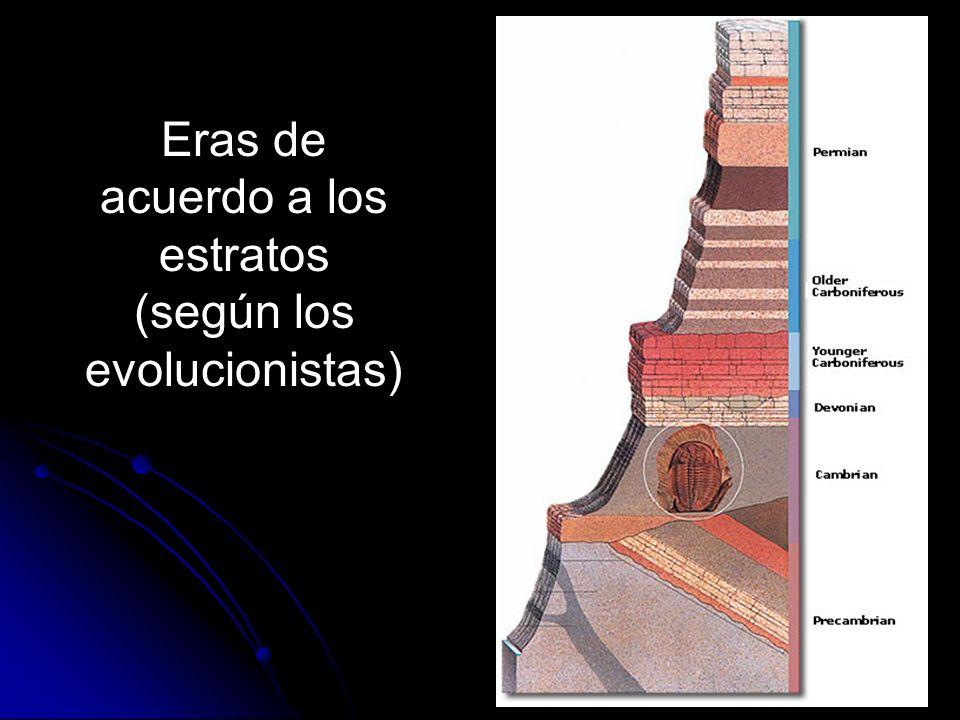 Eras de acuerdo a los estratos (según los evolucionistas)