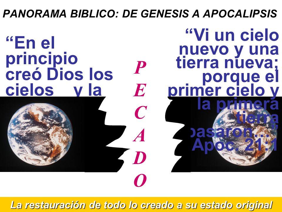 PANORAMA BIBLICO: DE GENESIS A APOCALIPSIS En el principio creó Dios los cielos y la tierra… Génesis 1:1 Vi un cielo nuevo y una tierra nueva; porque