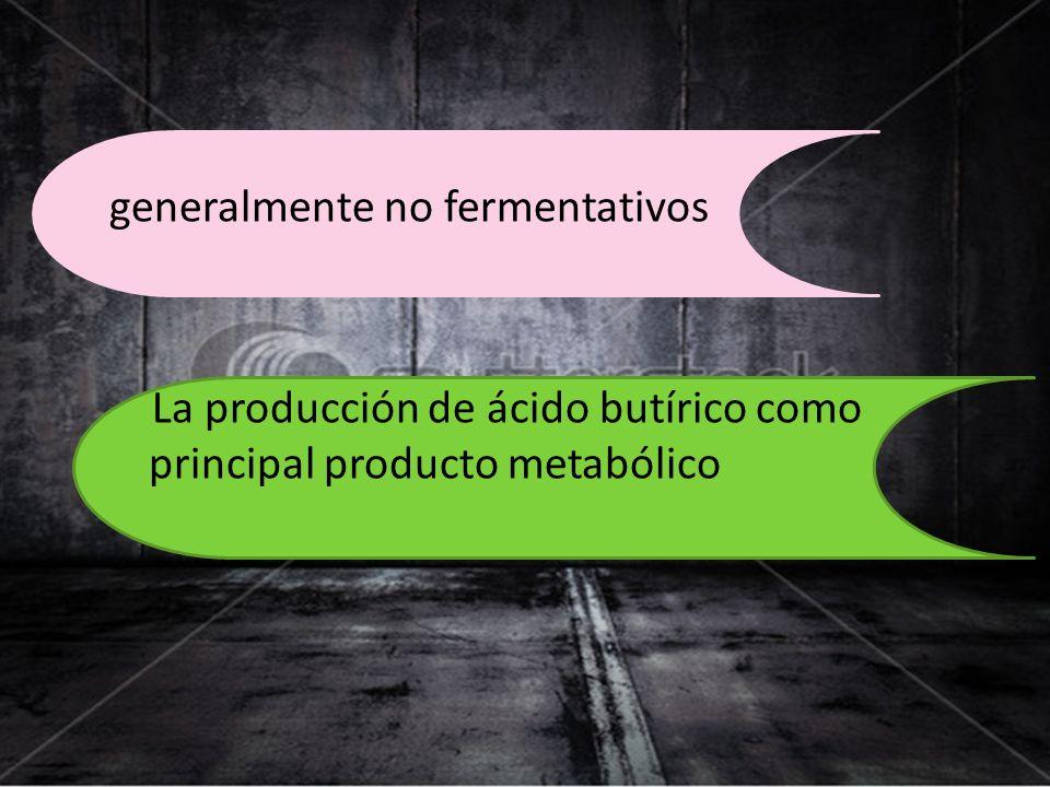 generalmente no fermentativos La producción de ácido butírico como principal producto metabólico