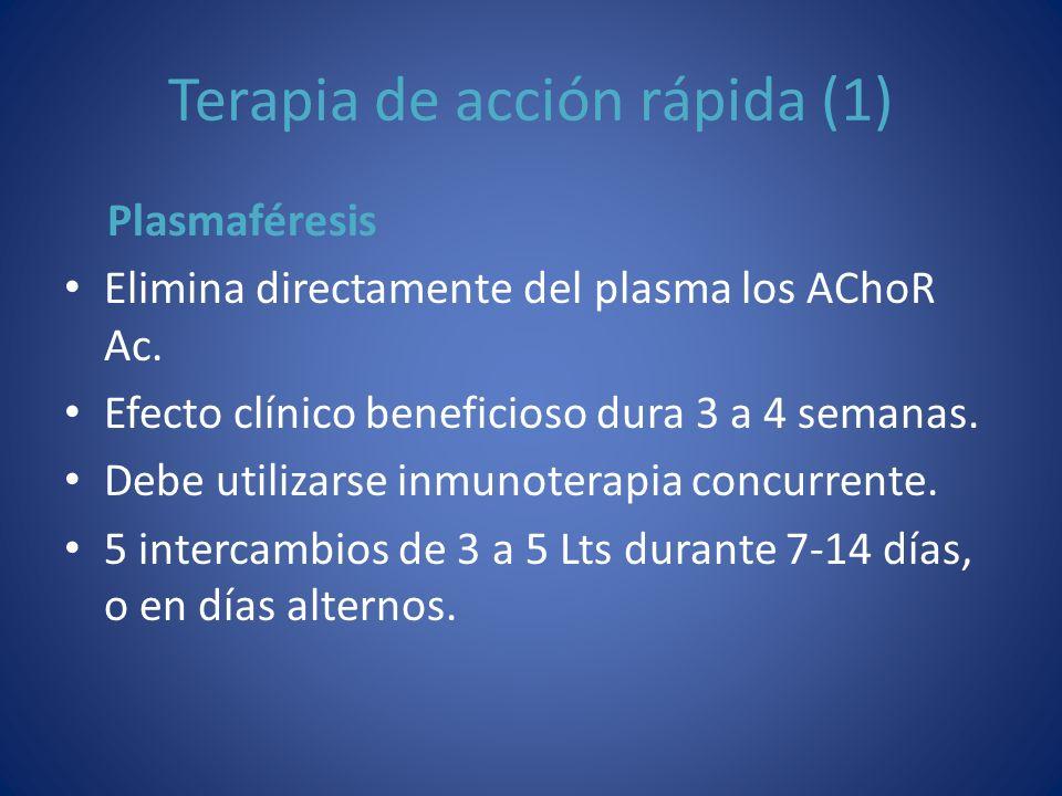 Terapia de acción rápida (1) Plasmaféresis Elimina directamente del plasma los AChoR Ac. Efecto clínico beneficioso dura 3 a 4 semanas. Debe utilizars