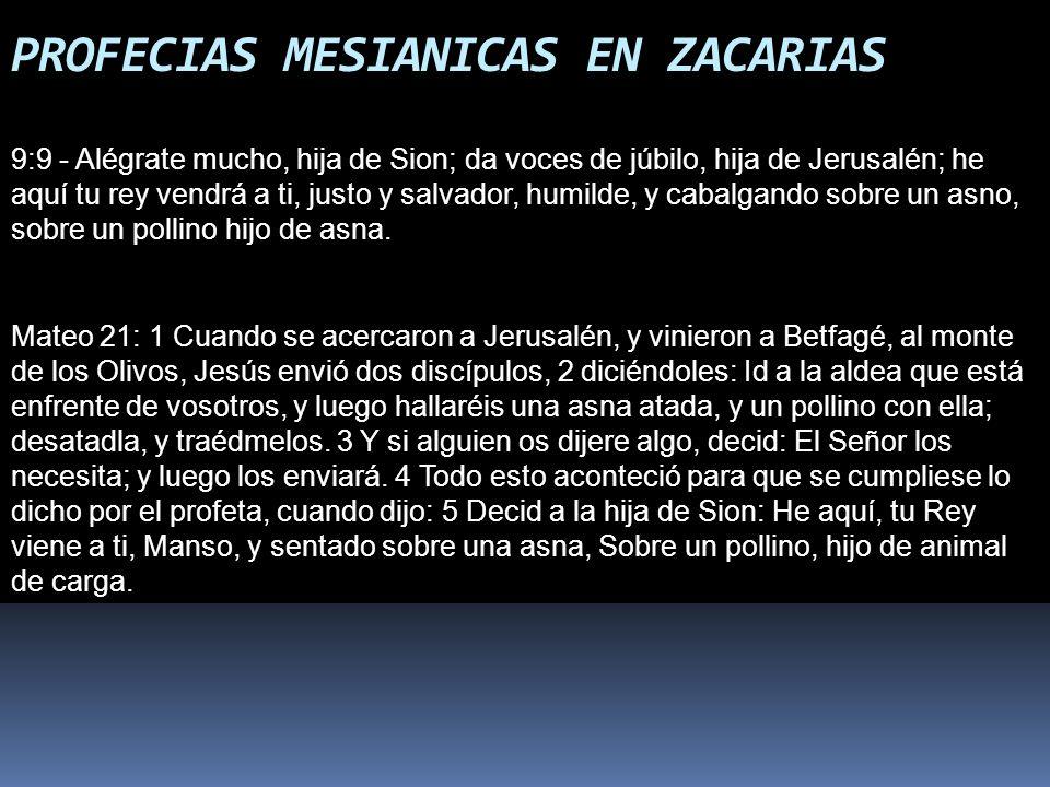 PROFECIAS MESIANICAS EN ZACARIAS 9:9 - Alégrate mucho, hija de Sion; da voces de júbilo, hija de Jerusalén; he aquí tu rey vendrá a ti, justo y salvad