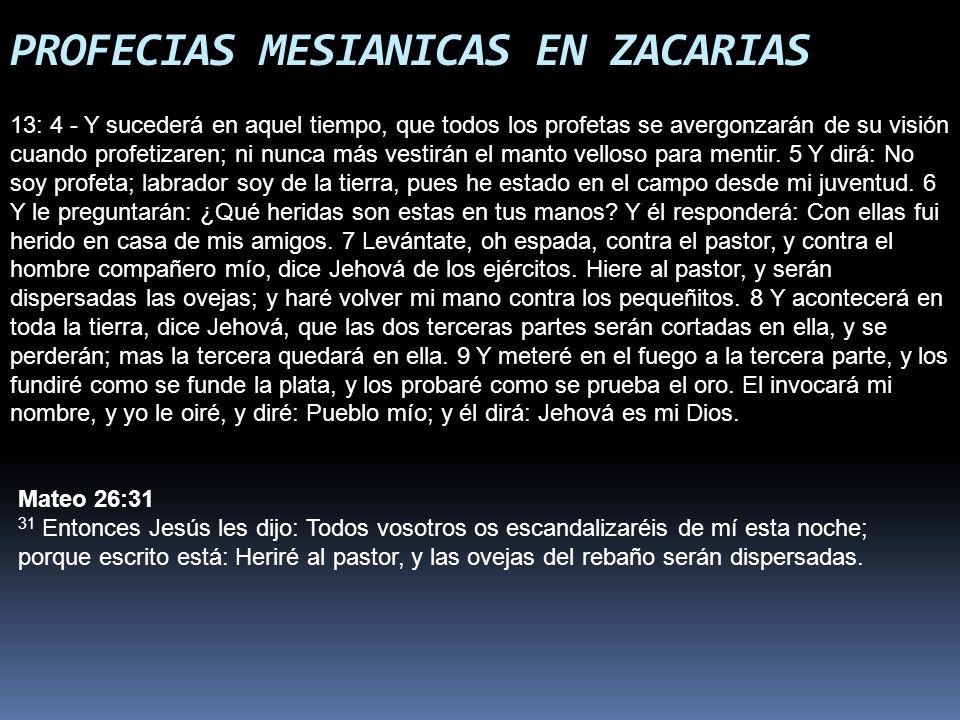 PROFECIAS MESIANICAS EN ZACARIAS 13: 4 - Y sucederá en aquel tiempo, que todos los profetas se avergonzarán de su visión cuando profetizaren; ni nunca