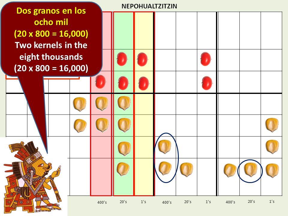 NEPOHUALTZITZIN 1s20s 400s 1s 400s 20s 830 830 x 423 x 423 1s 400s 20s Dos granos en los ocho mil (20 x 800 = 16,000) Two kernels in the eight thousan