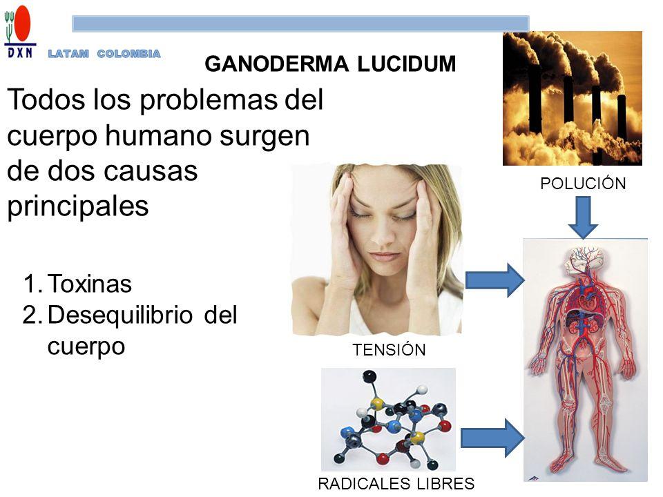 Todos los problemas del cuerpo humano surgen de dos causas principales 1.Toxinas 2.Desequilibrio del cuerpo POLUCIÓN TENSIÓN RADICALES LIBRES GANODERM