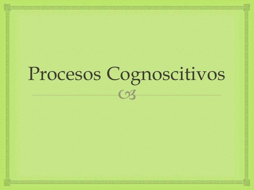 Procesos Cognoscitivos