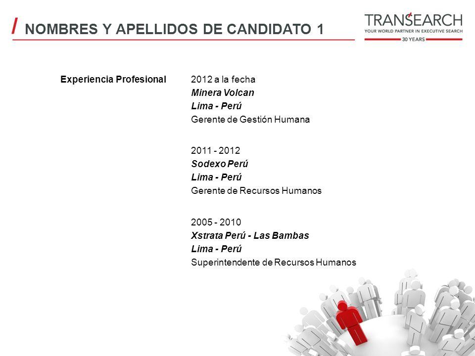 Experiencia Profesional2012 a la fecha Minera Volcan Lima - Perú Gerente de Gestión Humana 2011 - 2012 Sodexo Perú Lima - Perú Gerente de Recursos Hum