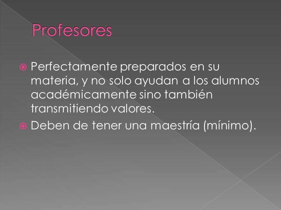 Perfectamente preparados en su materia, y no solo ayudan a los alumnos académicamente sino también transmitiendo valores.
