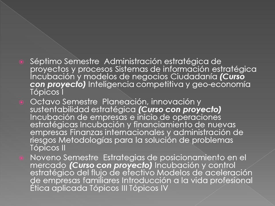 Séptimo Semestre Administración estratégica de proyectos y procesos Sistemas de información estratégica Incubación y modelos de negocios Ciudadanía (Curso con proyecto) Inteligencia competitiva y geo-economía Tópicos I Octavo Semestre Planeación, innovación y sustentabilidad estratégica (Curso con proyecto) Incubación de empresas e inicio de operaciones estratégicas Incubación y financiamiento de nuevas empresas Finanzas internacionales y administración de riesgos Metodologías para la solución de problemas Tópicos II Noveno Semestre Estrategias de posicionamiento en el mercado (Curso con proyecto) Incubación y control estratégico del flujo de efectivo Modelos de aceleración de empresas familiares Introducción a la vida profesional Ética aplicada Tópicos III Tópicos IV