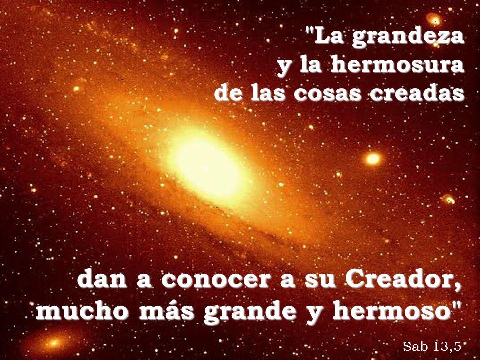 dan a conocer a su Creador, mucho más grande y hermoso