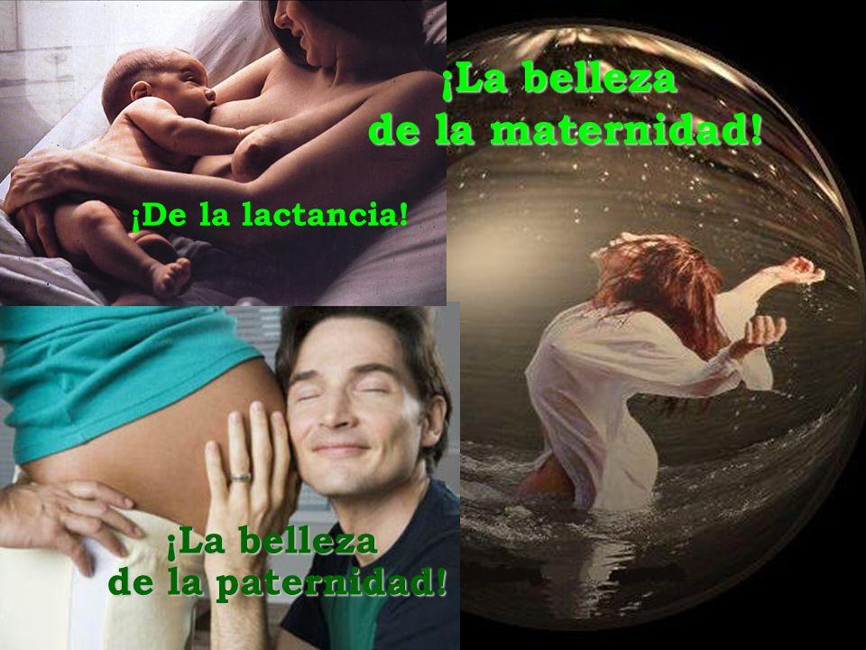 ¡La belleza de la maternidad! ¡De la lactancia! ¡La belleza de la paternidad!