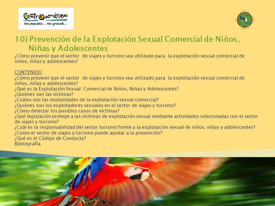 10) Prevención de la Explotación Sexual Comercial de Niños, Niñas y Adolescentes ¿Cómo prevenir que el sector de viajes y turismo sea utilizado para l