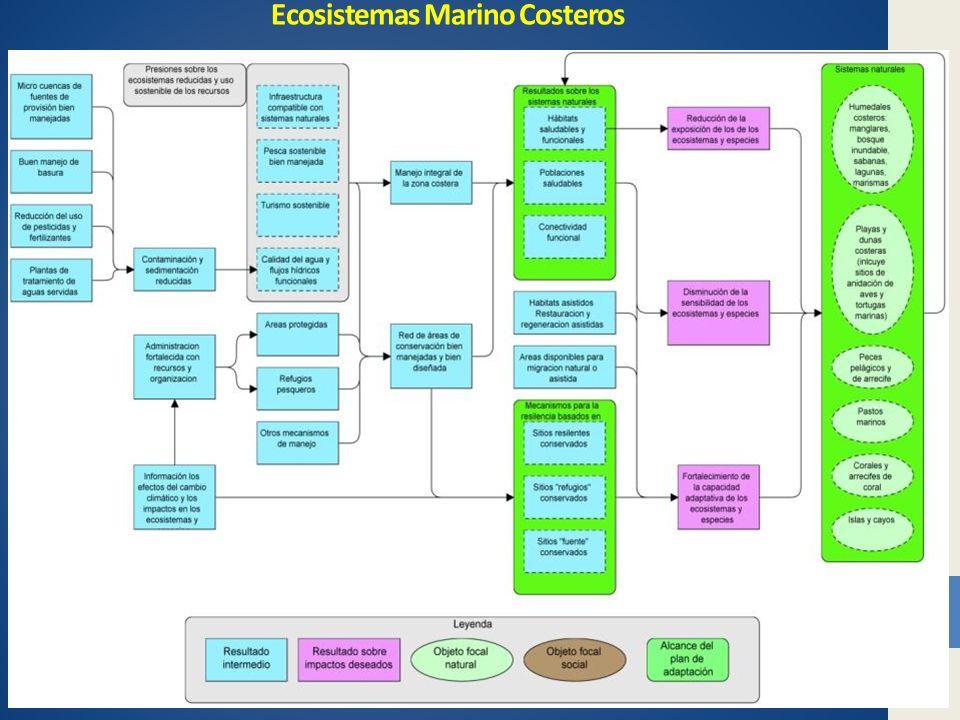 Ecosistemas Marino Costeros