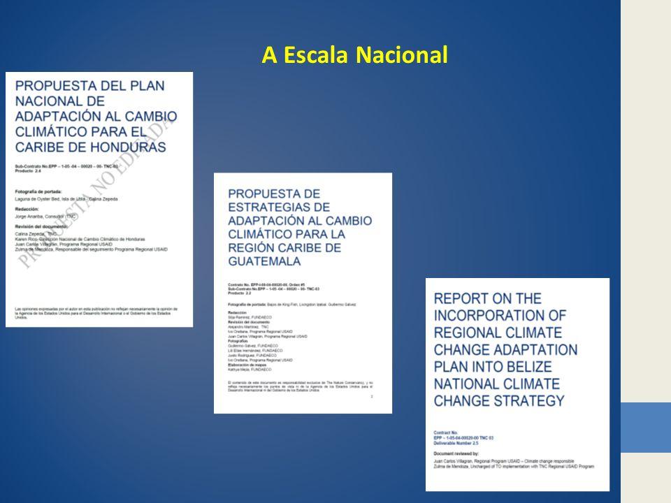 A Escala Nacional