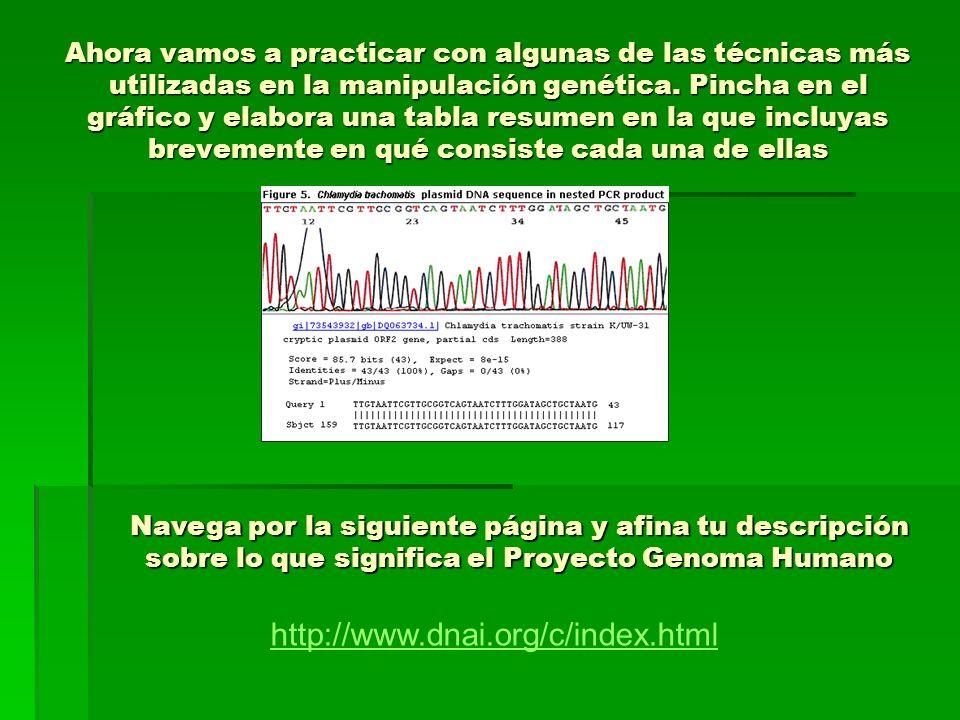 ¿Qué supone el conocimiento del genoma humano para nuestra sociedad.