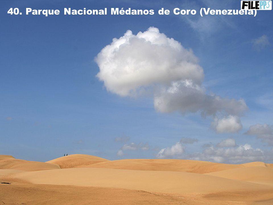 39. Parque Canaima (Venezuela)