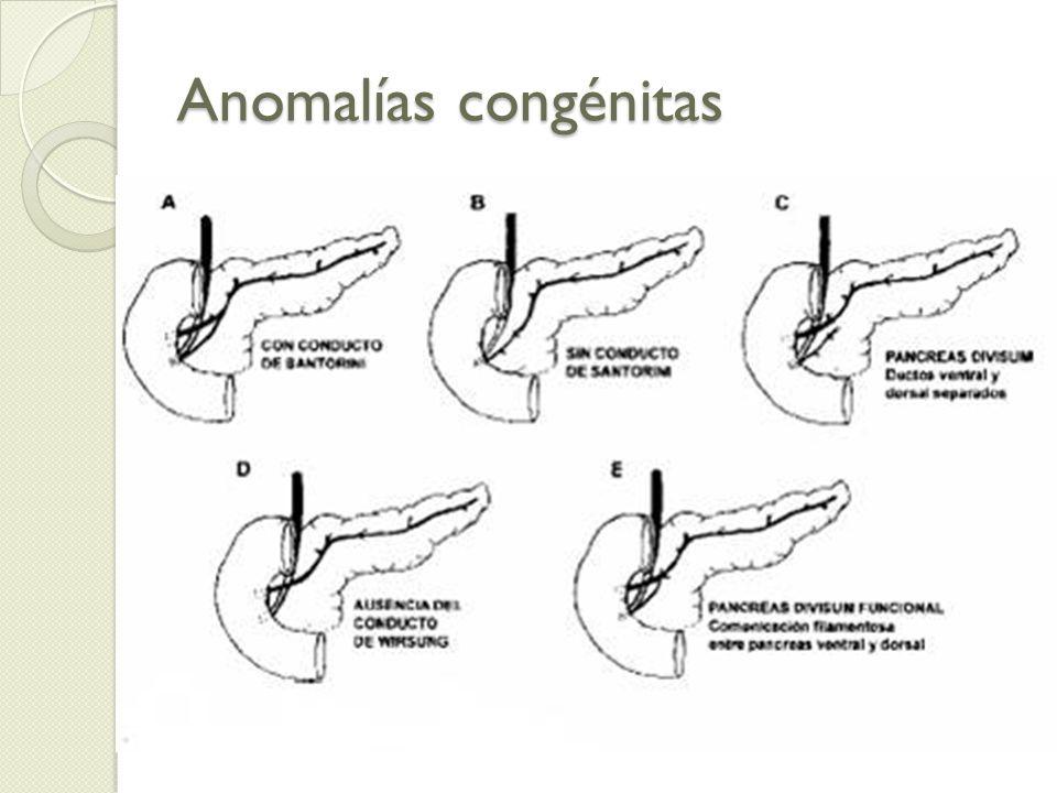 Anatomía Cabeza: En curvatura duodenal, medial y sup.