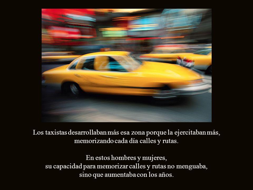 En marzo de 2000, investigadores de la Universidad de Londres, encontraron que los taxistas de esa ciudad, tenían una parte del cerebro, el Hipocampo - región importante para la memoria espacial-, particularmente desarrollada, mucho más que el resto de las personas.